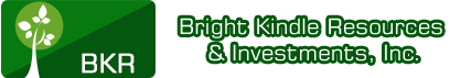 Bright Kindle Resources & Investments, Inc